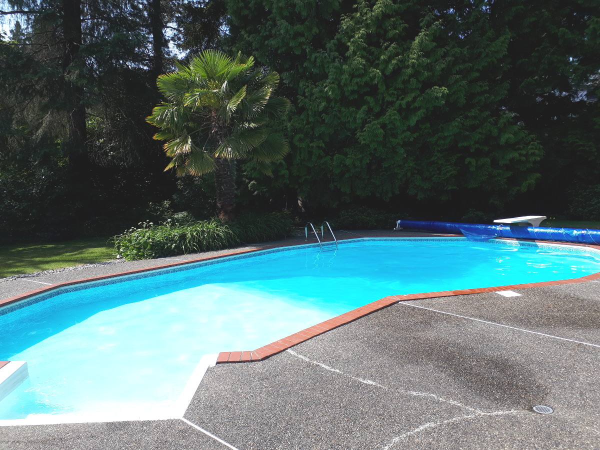 pool chemicals and what they do