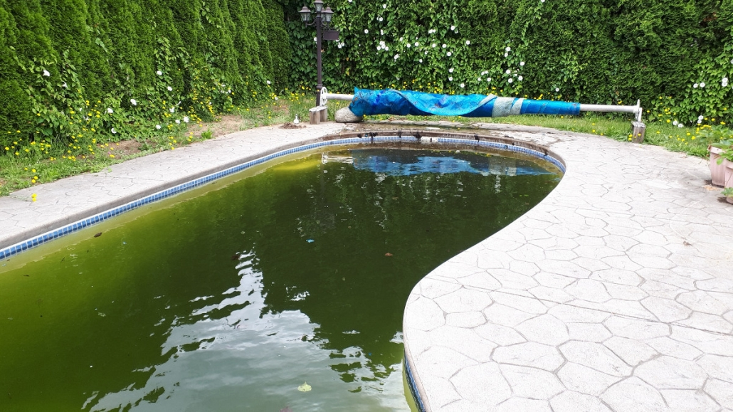 Pool Covers – Pros and Cons | C-Blu Service & Supplies Ltd.
